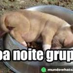 noite_grupo