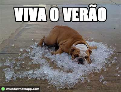 viva_verao