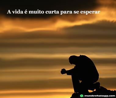 vida_curta