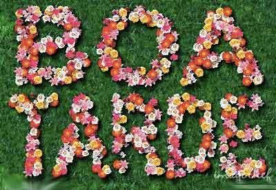 Boa Tarde Com Flores Status E Imagens