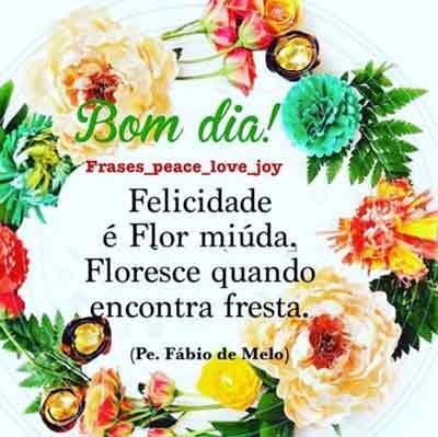 Felicidade é Flor Miúda Status E Imagens