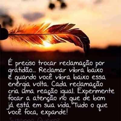 reflexao85