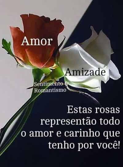 Amizade8