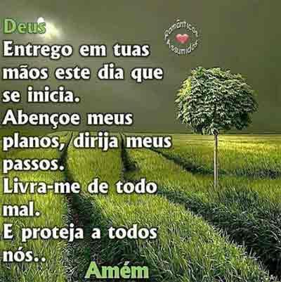 FraseManha6