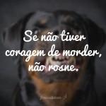 frase_indireta1