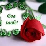 imagem_boatarde1