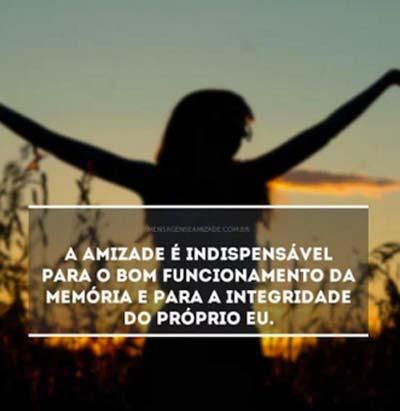 Amizade12