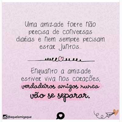 Amizade16