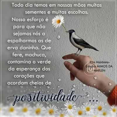 MotiManha1